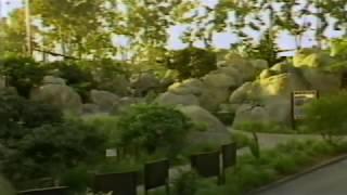 """San Diego Zoo """"It"""