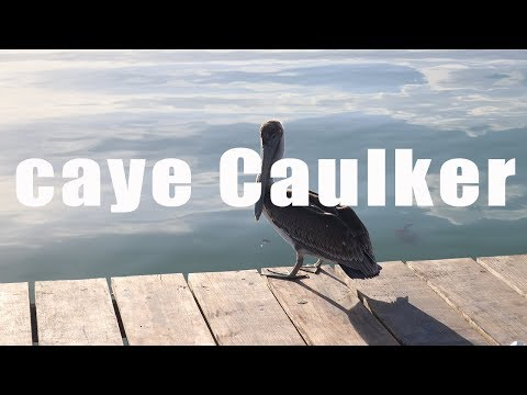 Caye Caulker, Belize | Canon 80D | Virtual Trip