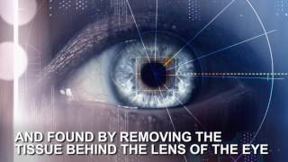 New surgery could restore 20/20 vision for the legally blind