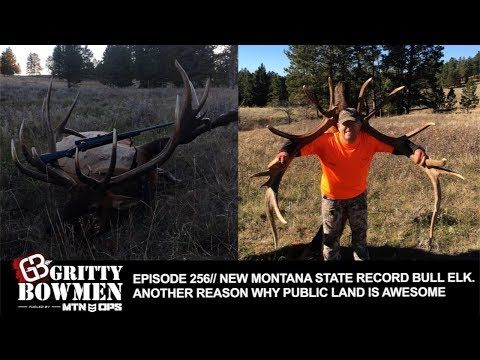 EPISODE 256: NEW MONTANA STATE RECORD BULL ELK. Another Reason Why Public Land is AWESOME