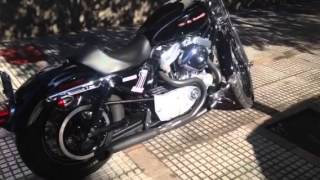 2004 Sportster 883 to 1200 JP idle