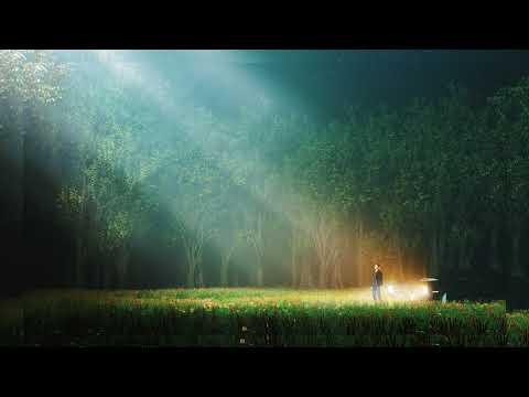 NGHTMRE & Carmada - Embrace (feat. Xavier Dunn) [Official Full Stream]