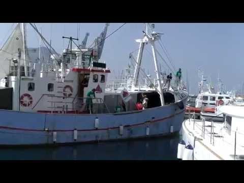 Freedom Flotilla arrives to Italy