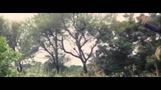 Video Hari Bhari - Panchhi Re download MP3, 3GP, MP4, WEBM, AVI, FLV November 2017
