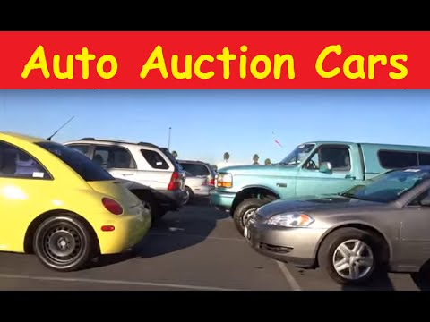 Buying Auction Cars Dealer Only Auto Auctions Preview Video