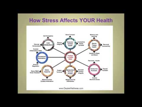 Stress Hormones and Health