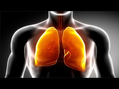 This is The Best Natural Way To Clear Your Lungs Of Nicotine and Tar!