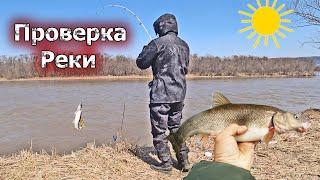 Закинул спиннинг и поймал рыбу Рыбалка весной на реке Смиринка в Приморье Ловля красноперки