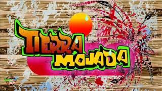 El Avispon Verde - Banda Tierra Mojada 2014 Promo 2014