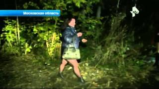 В Московской области полицейские задержали на обочине трассы несколько десятков проституток