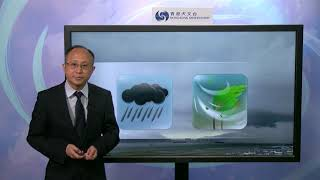 Central Briefing (5:00 pm 20 Apr) - Lee Tsz Cheung, Senior Scientific Officer thumbnail