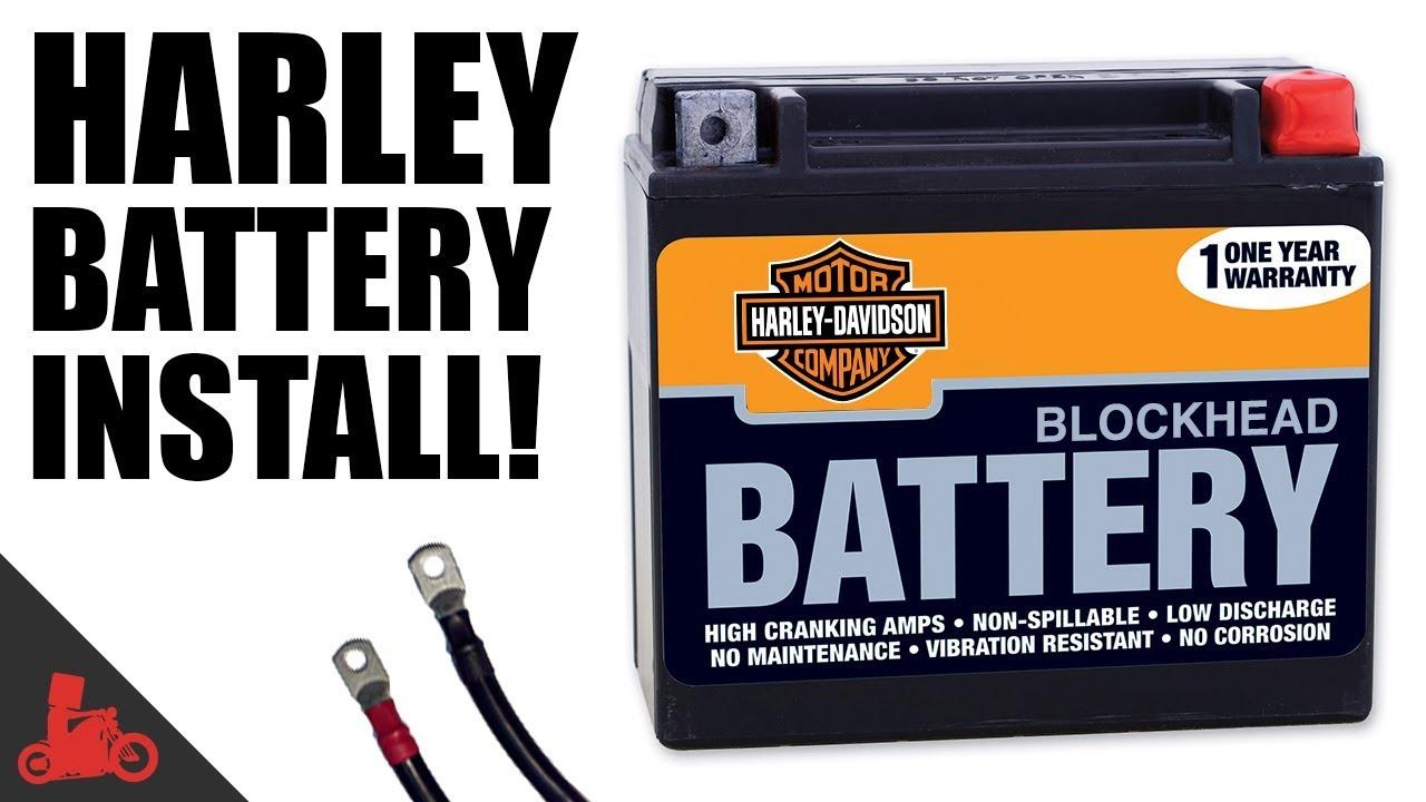 1996 Harley Davidson XL1200C Sportster 1200 Custom Battery Replacement