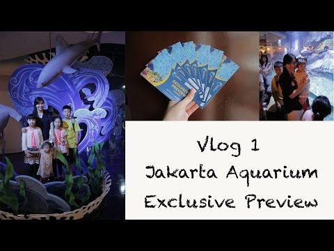 VLOG1: Jakarta Aquarium Exclusice Preview