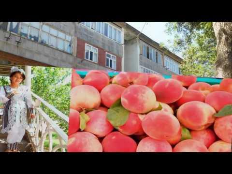 Восточный дастархан. Гастрономический тур 2017 в