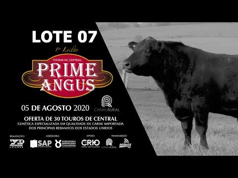 LOTE 07   BLACK OPAL TE878  SALTBAE  Prod  Agência El Campo