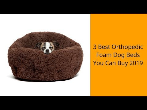 3-best-orthopedic-foam-dog-beds-you-can-buy-2019