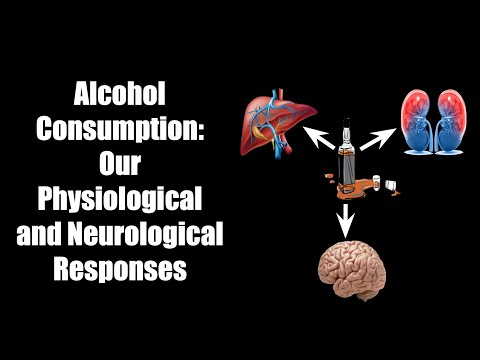 Alcohol Consumption: Our Physiological and Neurological Responses