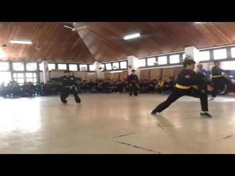Martial arts (In HA NOI)