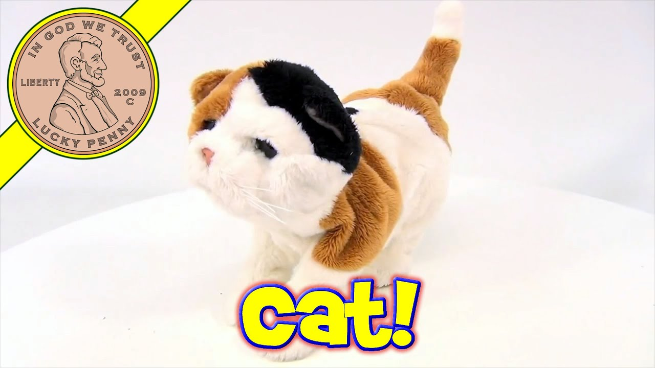 furreal friends animated kitty cat plush by hasbro toys 2009 youtube