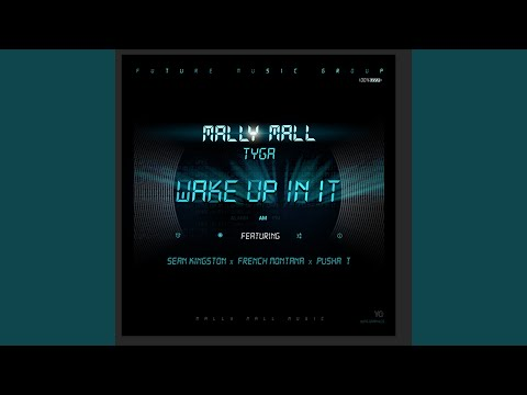 Wake Up In It (feat. Sean Kingston, French Montana & Pusha T)