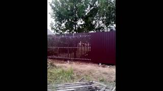 Комбинированный забор из профнастила и металлического штакетника(, 2014-09-11T06:02:04.000Z)