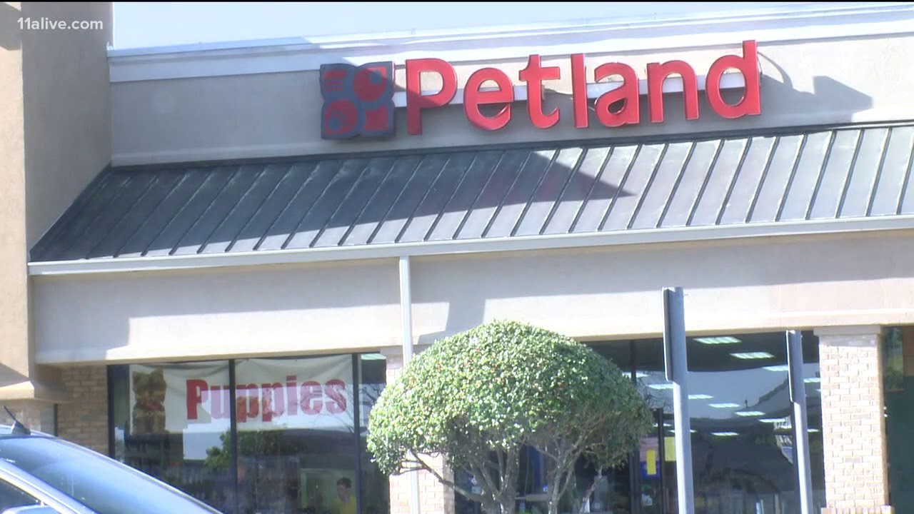 Petland 'Puppy Mill' lawsuit thrown out