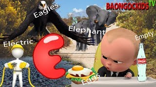 The Alphabet Letter E -E is for Elephant -E for Eagles -E for Eggs -E for Eat -E for Ear