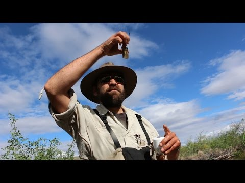 In the Field: Natural Resource Specialist