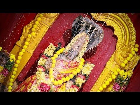 Madurai Melur | Nagammal Kovil | Iconic Festivel | Siragugal Media