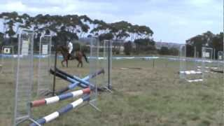 55cm Round Mt Dunned Freshman's Show jumping Day