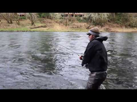 Watershed Fly Shop: Swinging Flies For Oregon Winter Steelhead