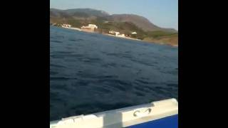 silverboat 2011 6 cv