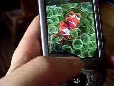 Mda Vario II - IFonz - IPhone Theme 1