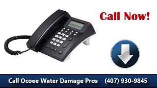 Ocoee FL Water Damage Repair (407) 930-9845 BEST Choice!