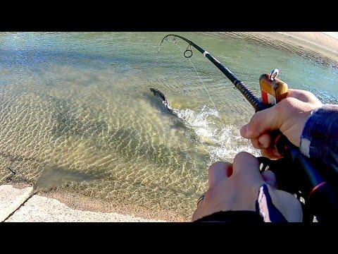 Houston's Best Kept Fishing Secret