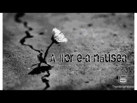a-flor-e-a-nÁusea---carlos-drummond-de-andrade