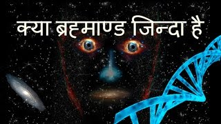 Is universe alive | is universe a living organism | universe is a giant brain