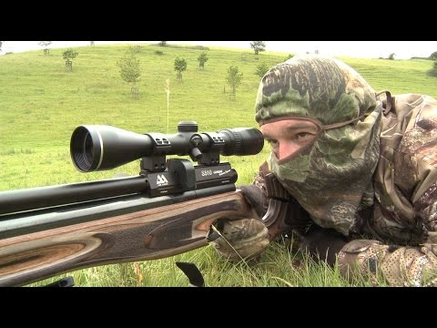 The Airgun Show – summer rabbit hunt PLUS the Gamo Coyote Tactical on test