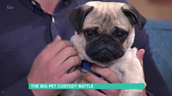 The Big Pet Custody Battle | This Morning