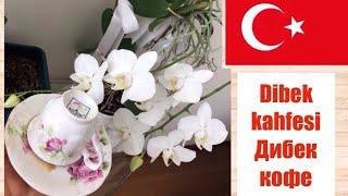 Что это за кофе Dibek kahfesi ? / Полезный кофе / Кофе по турецки / Кофе ДИБЕК