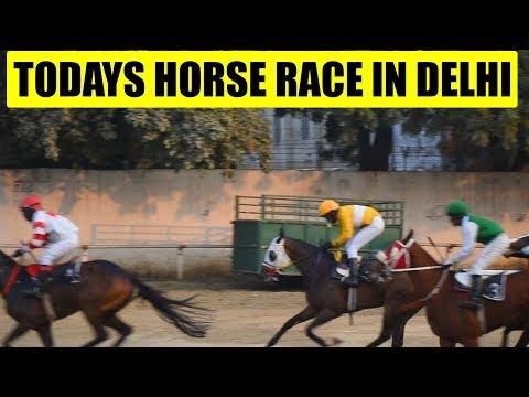 Horse Race at Delhi Race Club