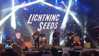 The Lightning Seeds - The Life of Riley, Live in Qatar 2019