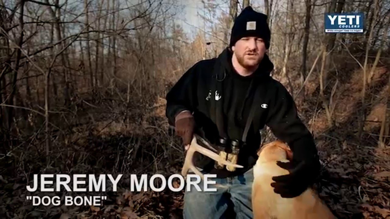 Deer Hunting Tips   How to train your dog to find shed antlers