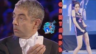cOUB 2017 АВГУСТ