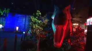 Шоу Динозавров в ЦДМ  Апрель 2015г.