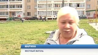В Перми от неизвестного яда гибнут домашние собаки