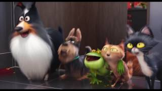 Тайная жизнь домашних животных / dubstep / epic