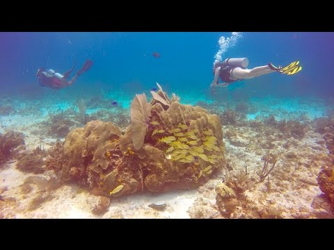 Isla Mujeres, Mexico in 4k