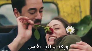 احمد ستار - جلال الزين || حبك كوكبي ?? حالات واتس اب ?? { علي × ايلول } نبضات القلب❤?