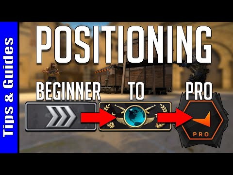 4 Levels of Positioning : Beginner to Pro (ft. Davey)